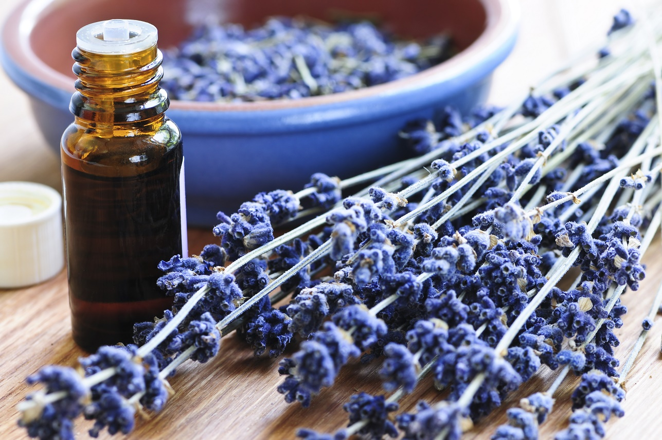 Aromatherapy at Therapy Station